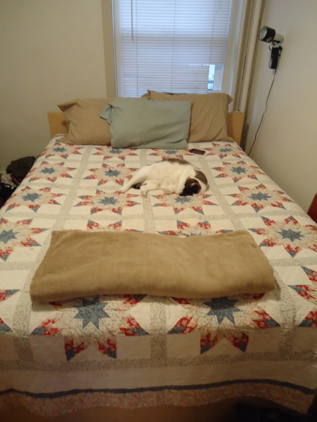 Prairie Star Quilt on the bed
